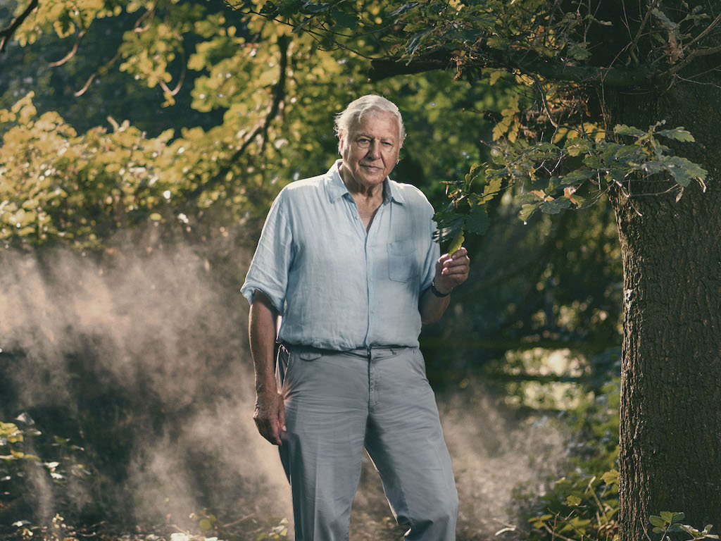 gen9 70 Years In The Field: Everything You Never Knew About Sir David Attenborough