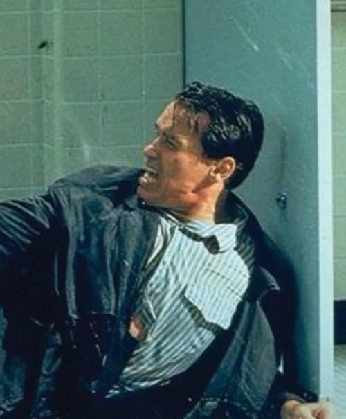 1 25 e1571064055628 20 Things You Never Knew About True Lies