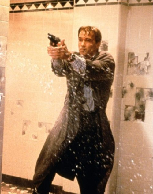 1 3 3 e1571064151657 20 Things You Never Knew About True Lies