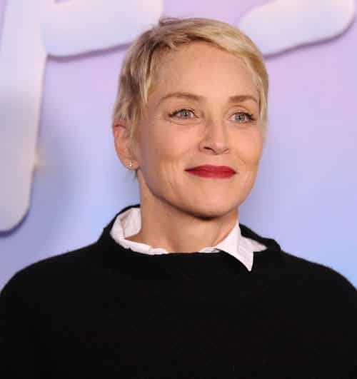 10 3 4 e1571734636488 20 Things You Probably Didn't Know About Sharon Stone