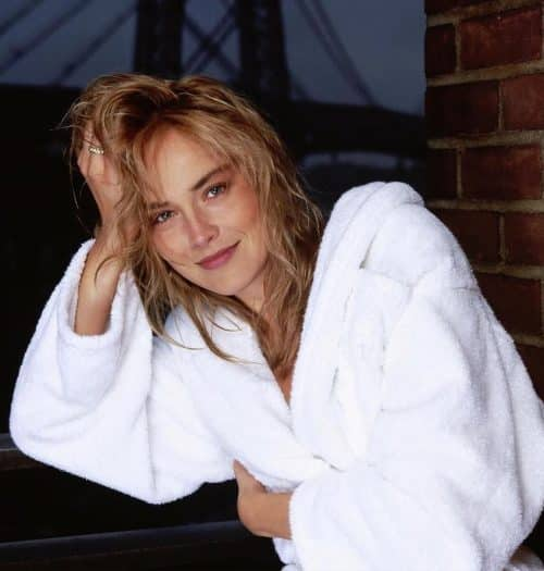 16 2 4 e1571733716276 20 Things You Probably Didn't Know About Sharon Stone