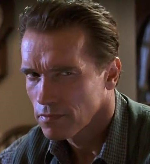 20 2 2 20 Things You Never Knew About True Lies