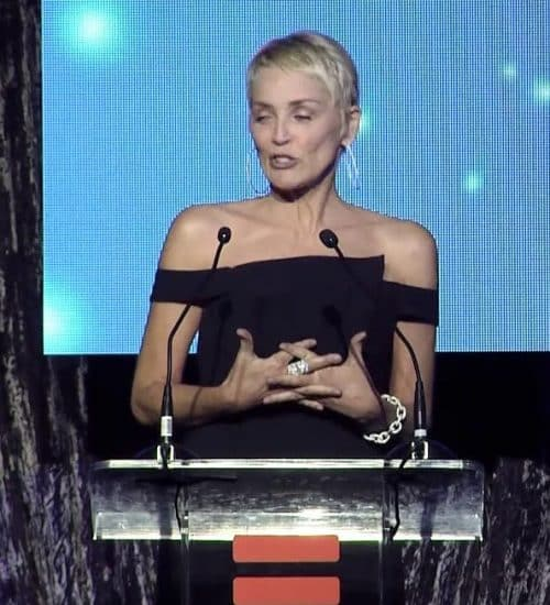 4 2 3 e1571735344700 20 Things You Probably Didn't Know About Sharon Stone