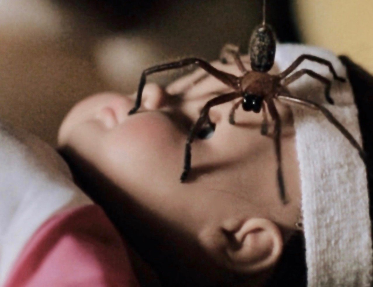 4 3 These 20 Creepy Facts About Disney's Arachnophobia Definitely Have Legs
