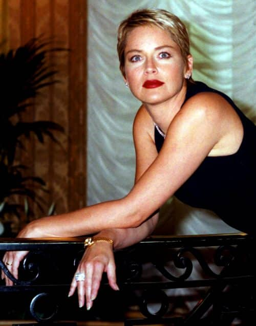 5 32 e1571735197346 20 Things You Probably Didn't Know About Sharon Stone