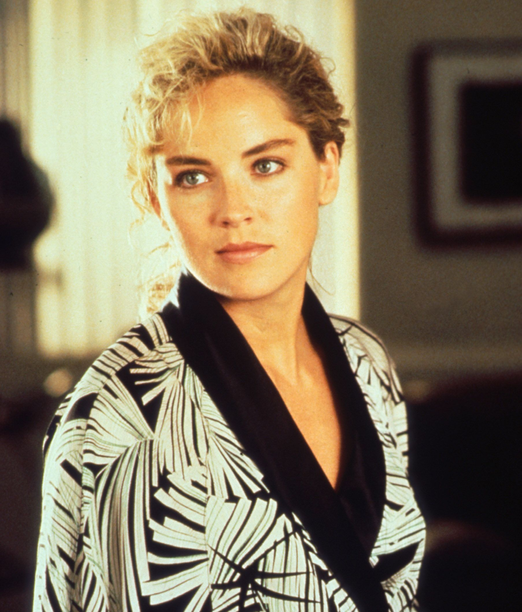 5a2ff5c12b1a3df1b3f546095979cb08 20 Things You Probably Didn't Know About Sharon Stone
