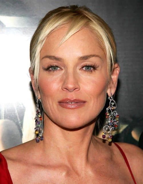 6 3 3 e1571735170921 20 Things You Probably Didn't Know About Sharon Stone