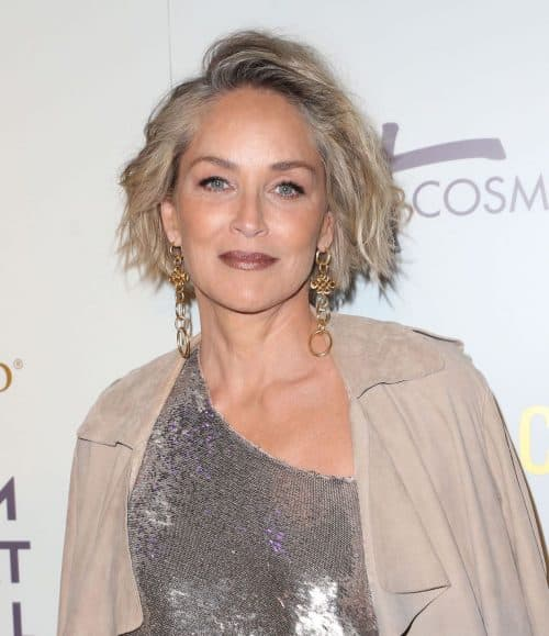 7 3 4 e1571735008645 20 Things You Probably Didn't Know About Sharon Stone