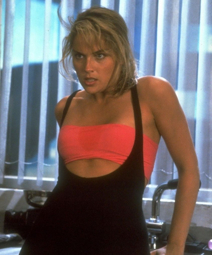 7a68cc8c3909935165f9965b309a32ff 20 Things You Probably Didn't Know About Sharon Stone