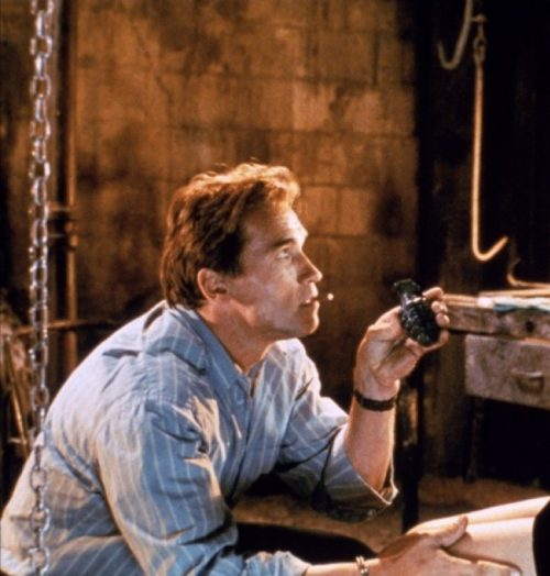 8 3 2 e1571063186598 20 Things You Never Knew About True Lies