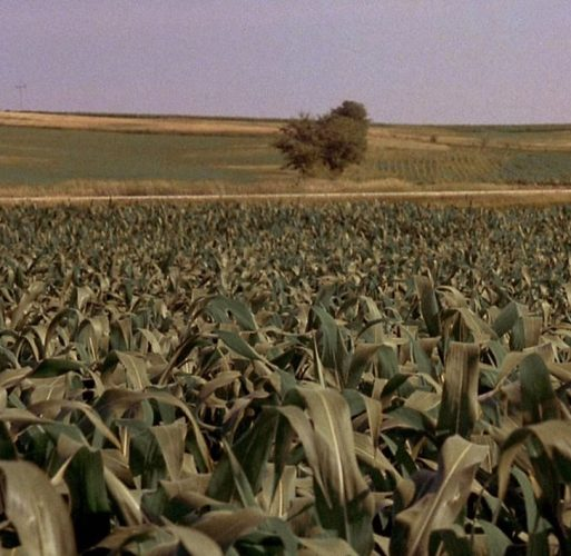 9 3 10 e1574092131700 20 Details You Probably Never Realized About Field Of Dreams