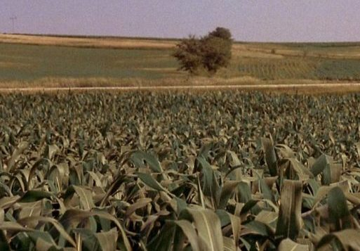9 3 10 e1617695473214 22 Things You Might Not Have Realised About Field Of Dreams