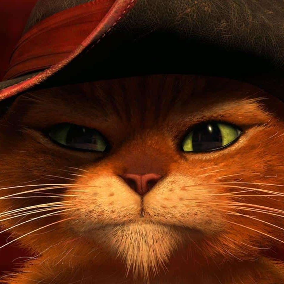 Puss in Boots e1572355978273 The Mask Of Zorro: 20 Facts About The Film That Will Really Leave A Mark