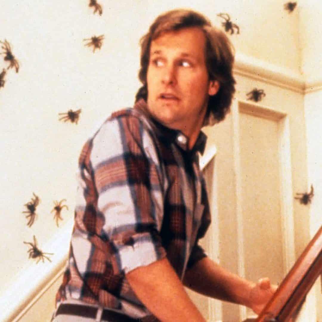 arachnophobia 1990 photo 8 e1572610202660 These 20 Creepy Facts About Disney's Arachnophobia Definitely Have Legs