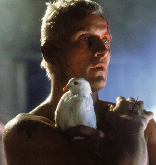blade runner 1982 021 rutger hauer dove crop 20 Facts You People Wouldn't Believe About 1982's Blade Runner