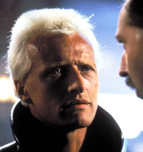 blade runner2 20 Facts You People Wouldn't Believe About 1982's Blade Runner
