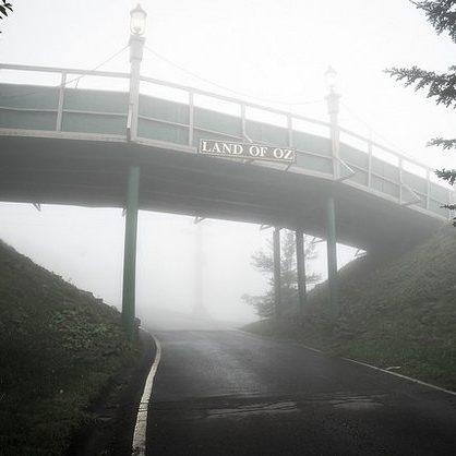 Covered In Creepy Fog