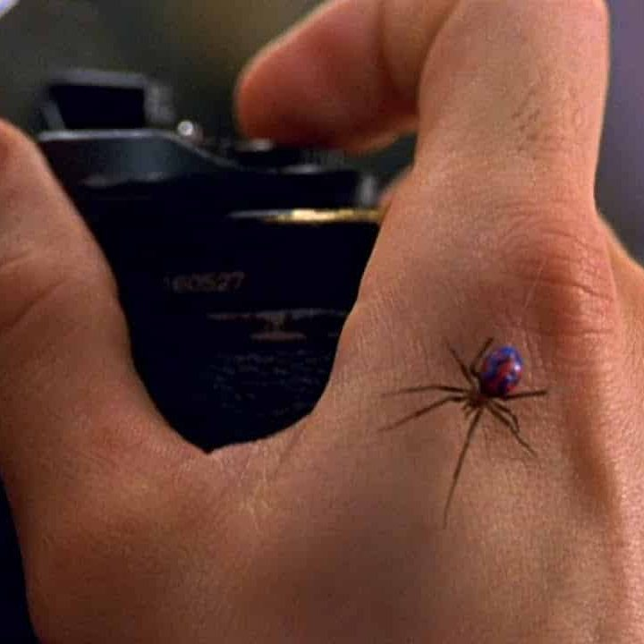 maxresdefault 1 22 e1572603023112 These 20 Creepy Facts About Disney's Arachnophobia Definitely Have Legs