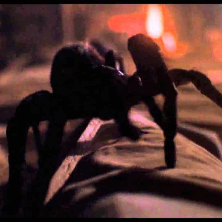 maxresdefault 49 e1572603909118 These 20 Creepy Facts About Disney's Arachnophobia Definitely Have Legs
