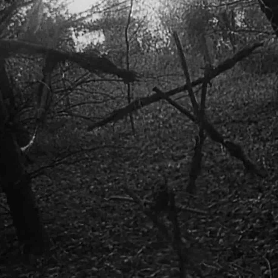 the blair witch project 2 e1571997441907 The Blair Witch Project: 20 Behind-The-Scenes Nuggets That Made It The Most Successful Film Ever