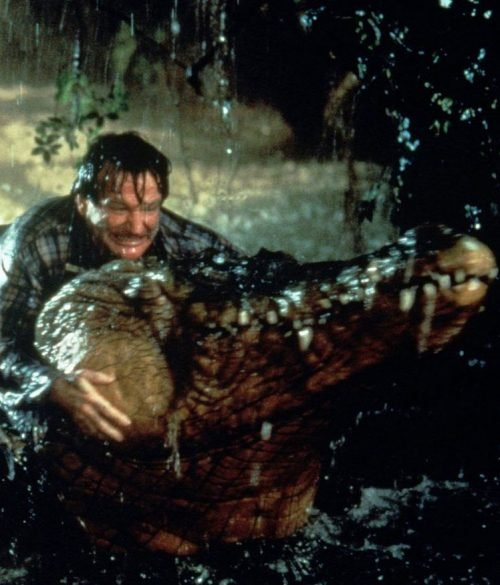 19 2 e1575385661963 20 Things You Probably Didn't Know About The Classic Jumanji