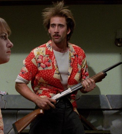 3 3 3 e1575642042309 20 Things You Might Not Have Known About The Coen Brothers' Raising Arizona