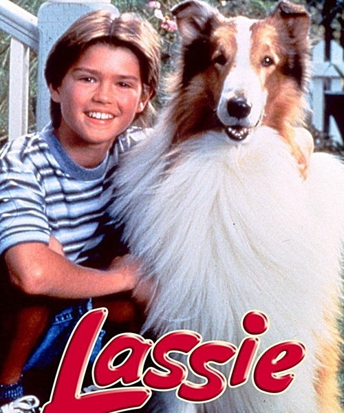 3 3 8 Animal Based TV Shows We Loved Watching As Kids