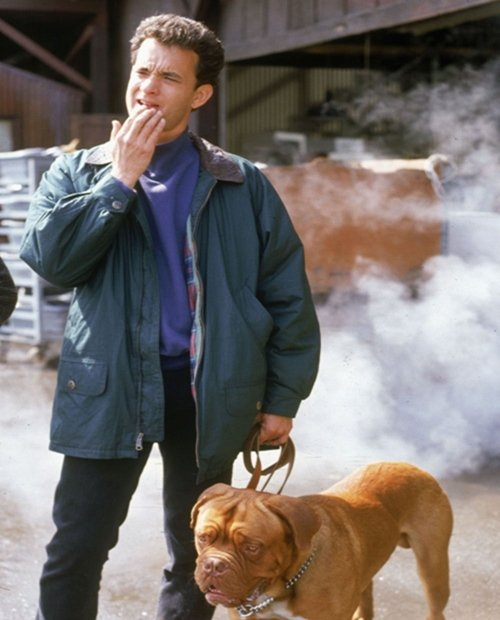 5 36 10 Things You Never Knew About Turner & Hooch
