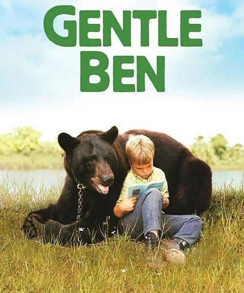 6 28 8 Animal Based TV Shows We Loved Watching As Kids
