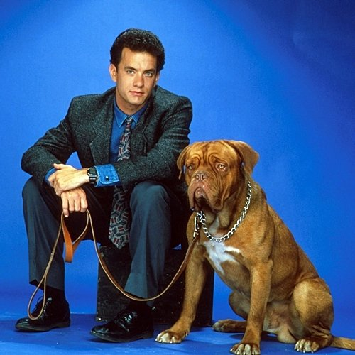 9 33 10 Things You Never Knew About Turner & Hooch