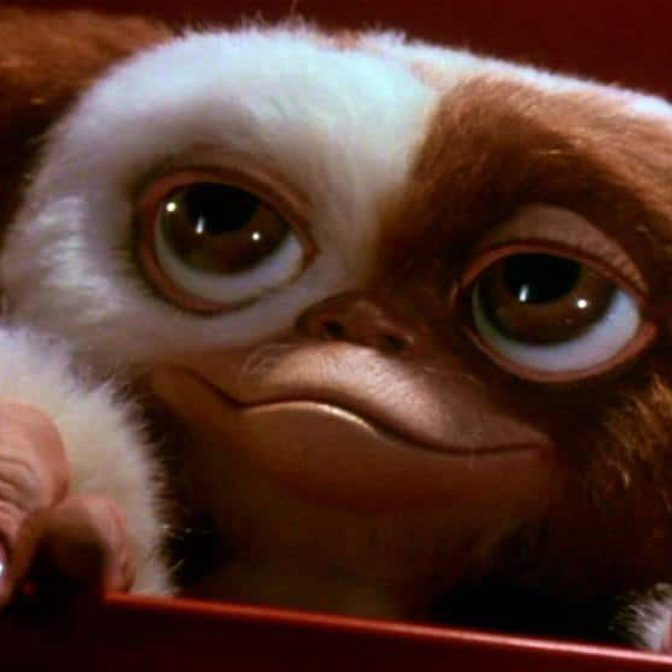 Gremlins 3 1 e1578478961384 20 'Christmas Movies' That Aren't Actually Christmas Movies At All