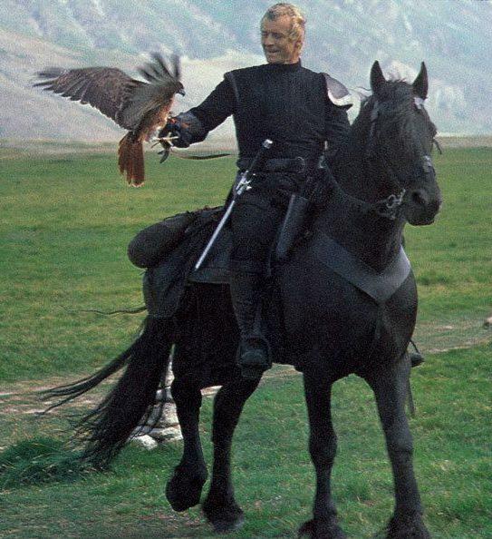 0ad49f5872e4aaccdfed4e44829273ae e1581431935885 20 Fantastic Facts About The 1985 Sword And Sorcery Film Ladyhawke