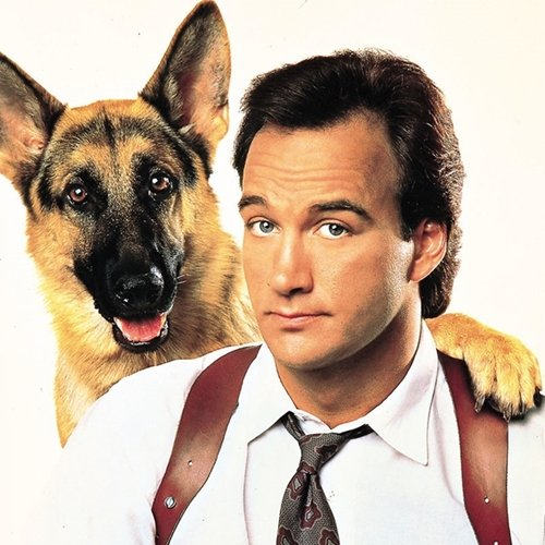 1 16 9 Fantastically Furry Facts About The Brilliant K-9!