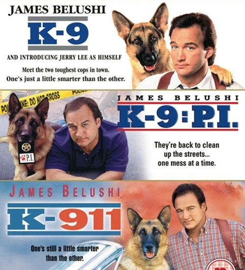 2 18 9 Fantastically Furry Facts About The Brilliant K-9!