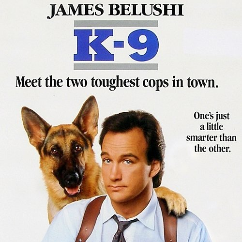 3 20 9 Fantastically Furry Facts About The Brilliant K-9!