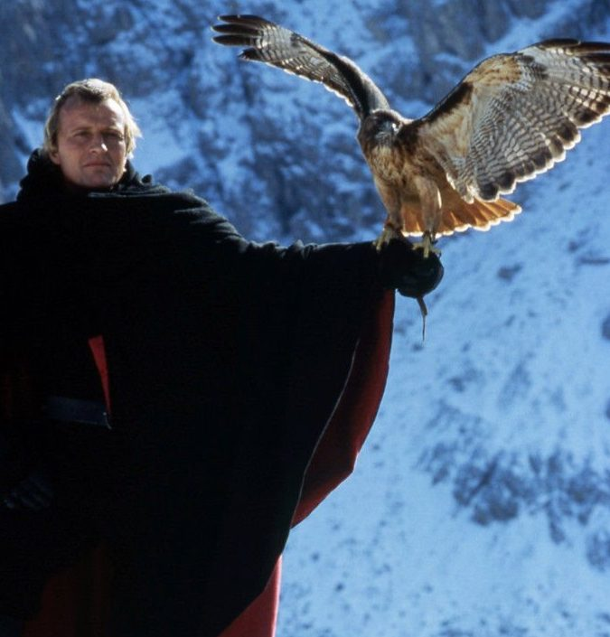 5171180401053592143 e1581421147497 20 Fantastic Facts About The 1985 Sword And Sorcery Film Ladyhawke