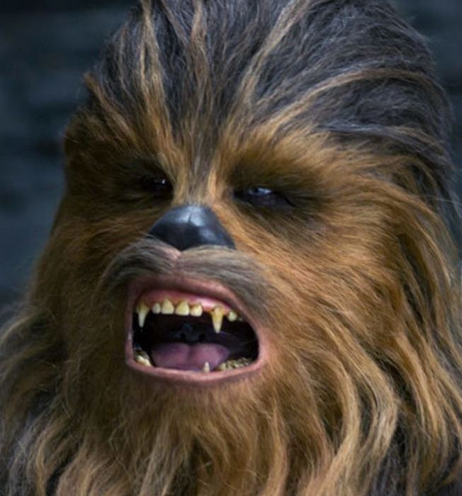 Chewbacca 20 Reasons Why Star Wars: The Rise Of Skywalker Makes Absolutely No Sense