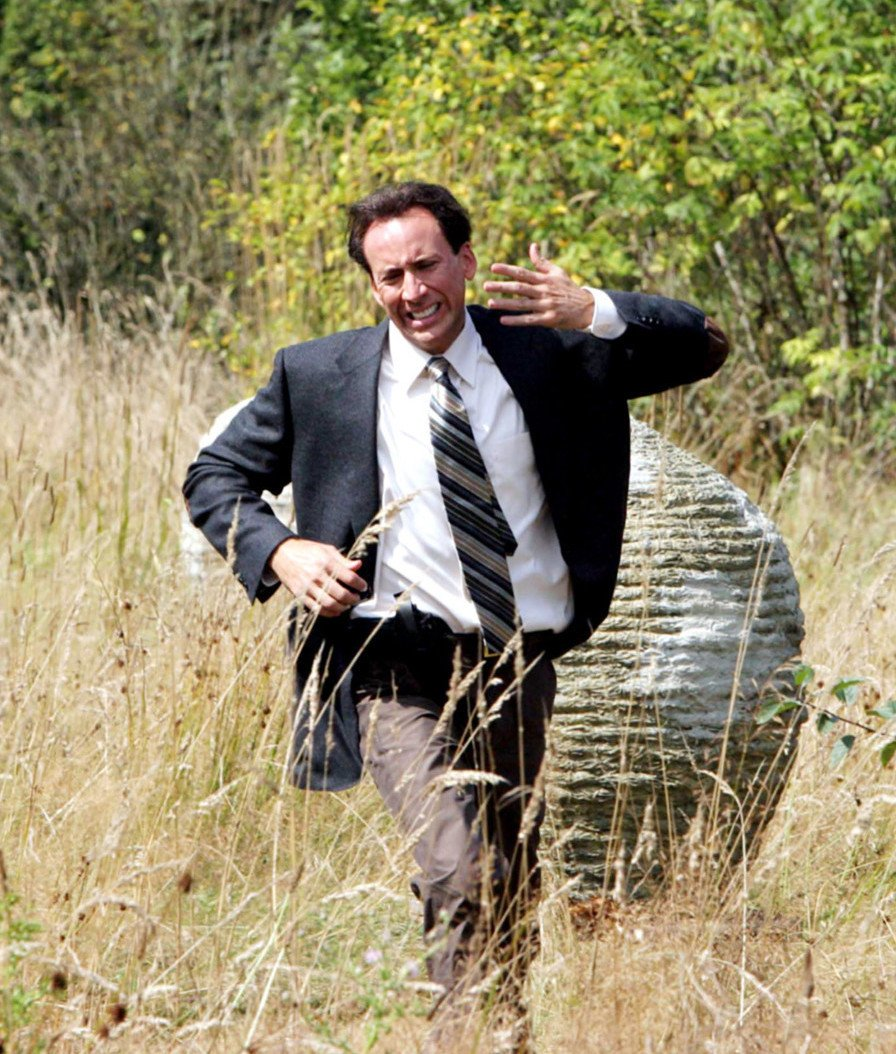 The Wicker Man Nic Cage Bees 10 All-Time Great Horror Remakes (And 10 That Were Awful)