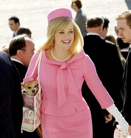 legally blonde sequel 20 Famous Actors Who Almost Played Iconic Movie Roles