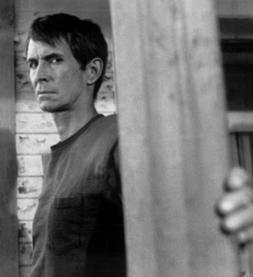 psycho2 Have A Stab At These 20 Terrifying Facts About Psycho II
