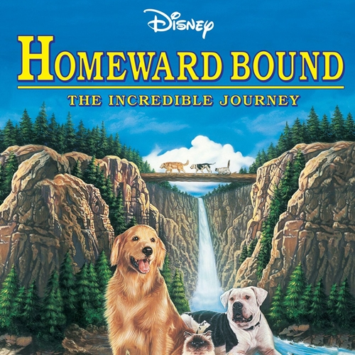 8 13 10 Heartwarming Facts About 1993's Homeward Bound: The Incredible Journey