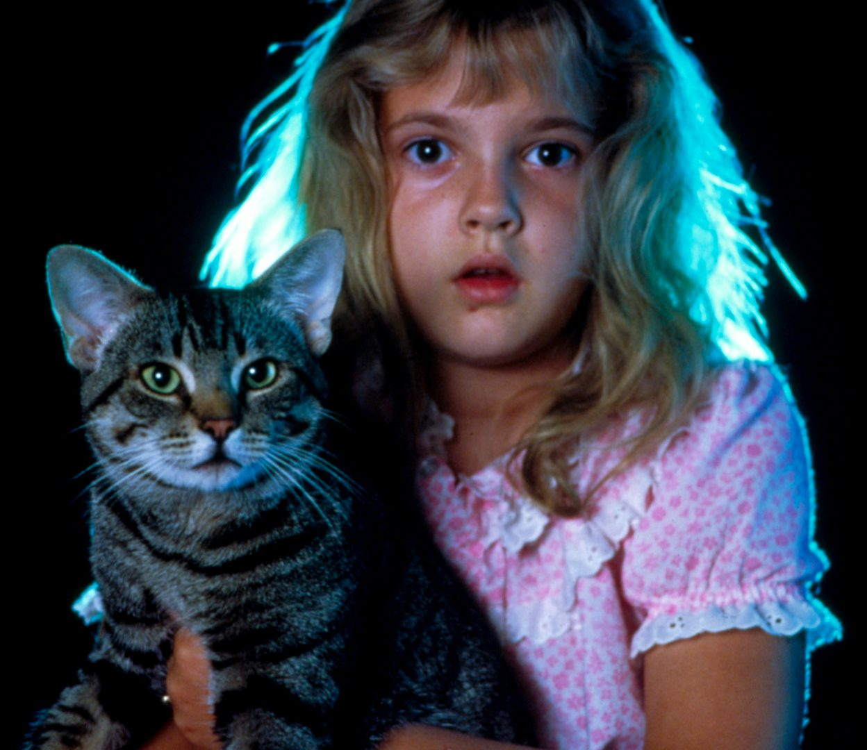 Cats eye e1605273054362 15 Stephen King Films Better Than The Books They Were Based On, And 15 That Were Worse