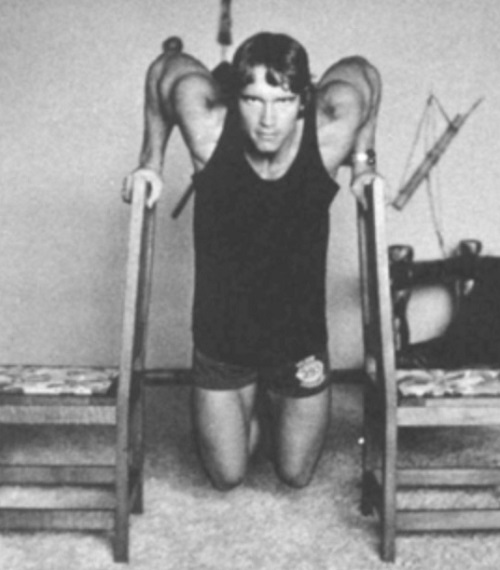 o8HCpoR Arnold Schwarzenegger Publishes Home Workout Plan Involving Chairs, A Broom Handle