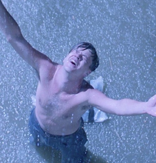 untold truth shawshank redemption 15 Stephen King Films Better Than The Books They Were Based On, And 15 That Were Worse
