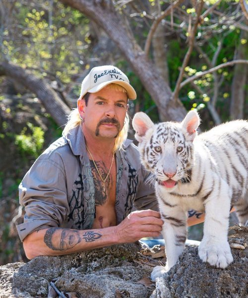 4 2 e1585739418264 Carole Baskin Awarded Control Of 'Tiger King' Joe Exotic's Zoo In Court Ruling