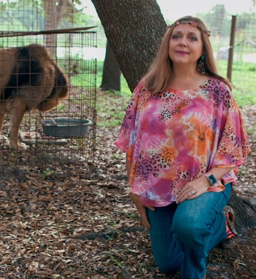 6 2 e1585739359744 Carole Baskin Awarded Control Of 'Tiger King' Joe Exotic's Zoo In Court Ruling