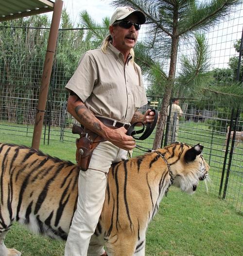 818f8874207b5c3ecba533b65e07783b Carole Baskin Awarded Control Of 'Tiger King' Joe Exotic's Zoo In Court Ruling
