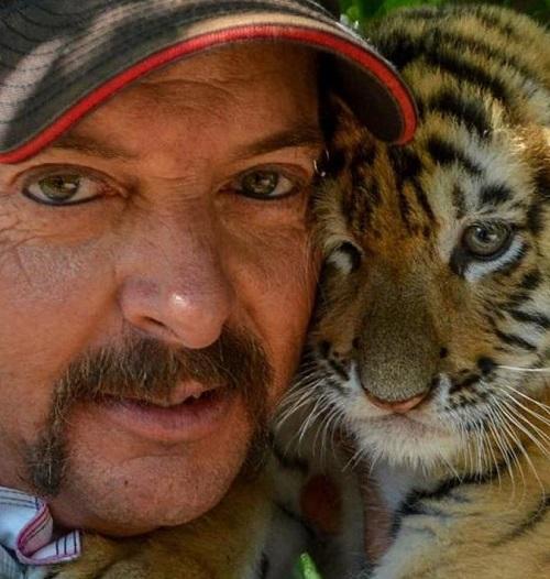 v3imagesbin8b45db9c0695b04348ea3da25421c40b Carole Baskin Awarded Control Of 'Tiger King' Joe Exotic's Zoo In Court Ruling