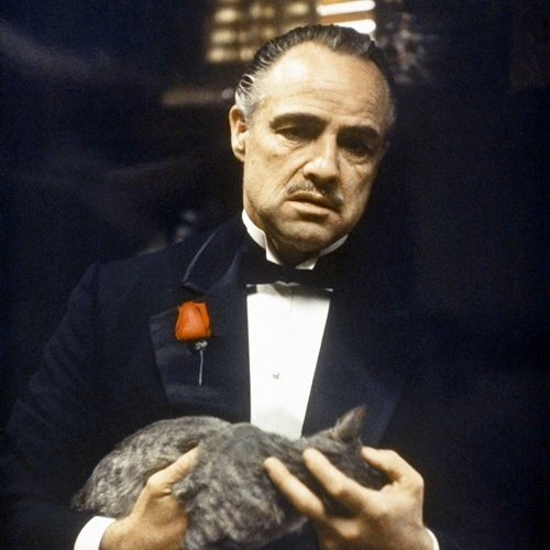 1 17 20 Fascinating Facts About The Godfather You Can't Refuse