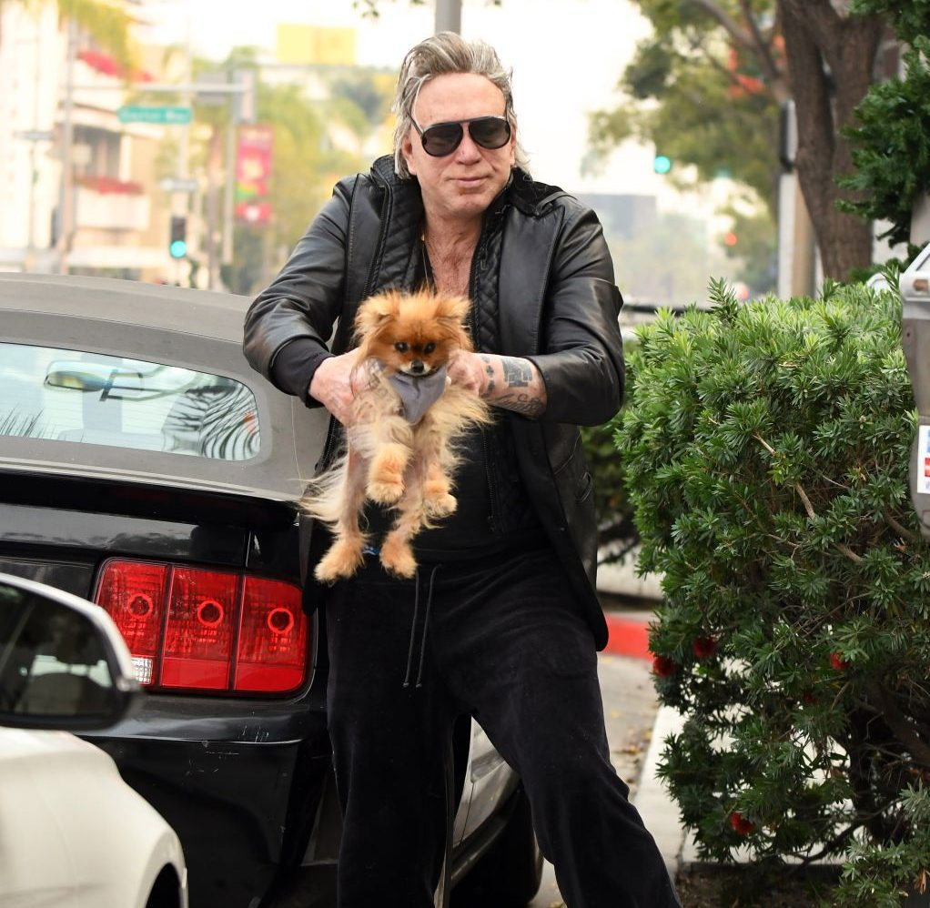 25 6 e1600684967166 20 Things You Never Knew About Mickey Rourke